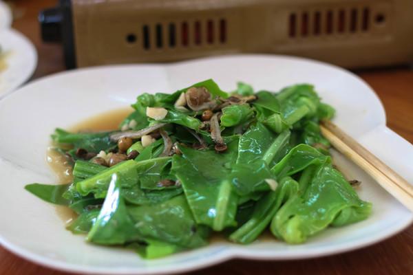 fresh vegetable dongshih forest garden jialin restaurant