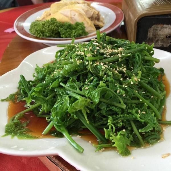 jialin restaurant dongshih forest garden