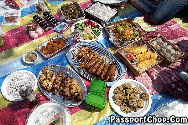 picnic sakura viewing season japan tokyo Shinjuku