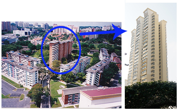 queenstown HDB transformation heritage sers forfar heights