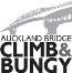 Auckland Bridge Climb Bungy